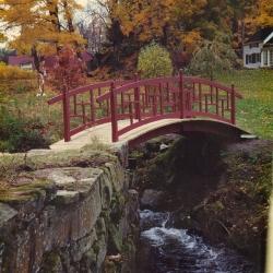 arched_bridge_2-jpg
