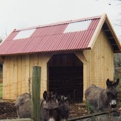 donkey_shed_-jpg