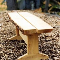 locust_bench-jpg